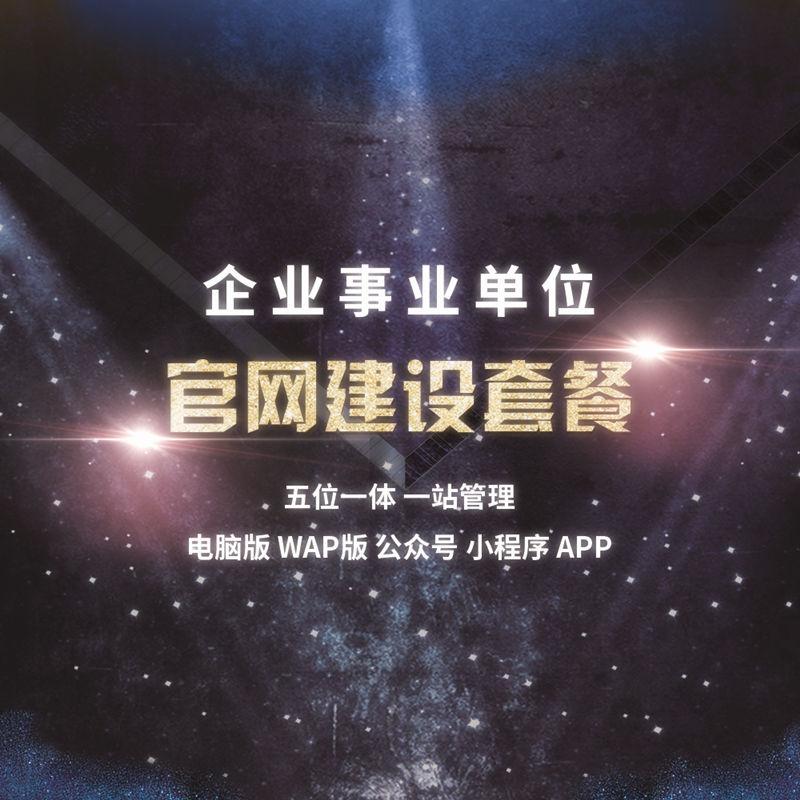 旗舰版 企事业单位官方网站套餐