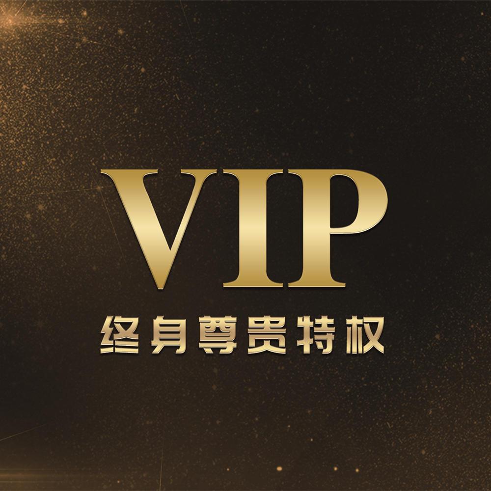 业融易通用网站终身VIP会员双十二秒杀